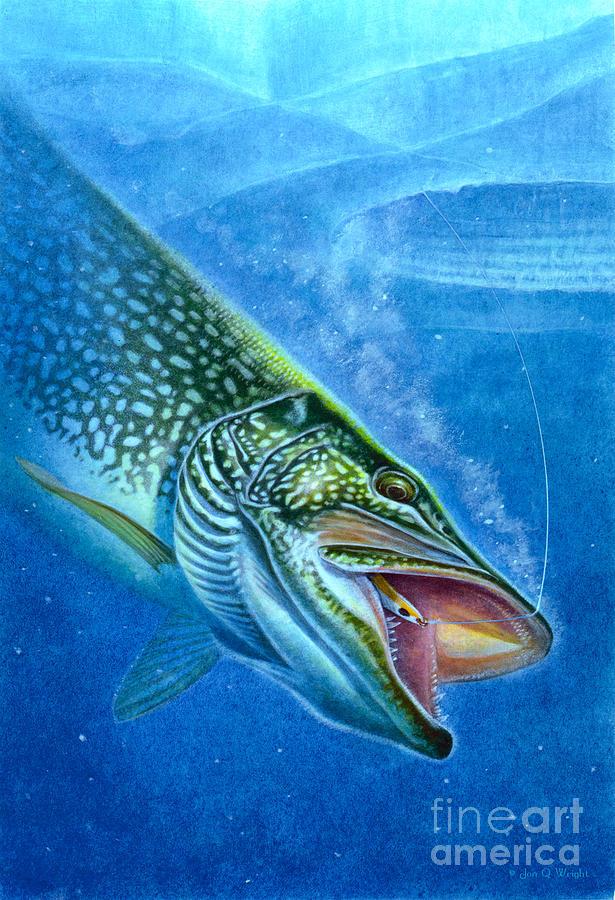 Jon Q Wright Painting - Pike And Ice Fishing by Jon Q Wright