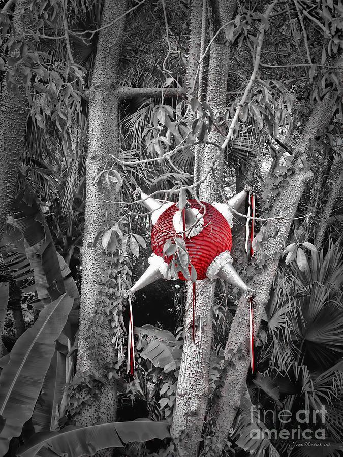 Pinata Photograph - Pinata In Woods by Joan  Minchak