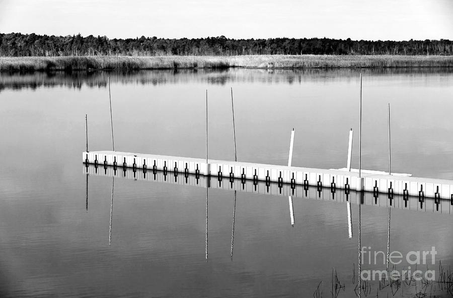 Dock Photograph - Pine Barrens Dock by John Rizzuto