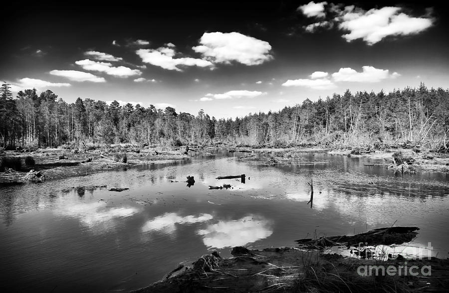 Pine Barrens Lake Photograph - Pine Barrens Lake by John Rizzuto