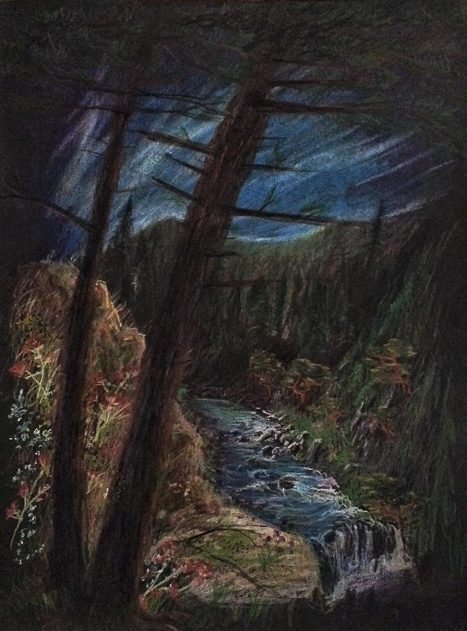 Pine Forest Brook  by Alan Schwartz