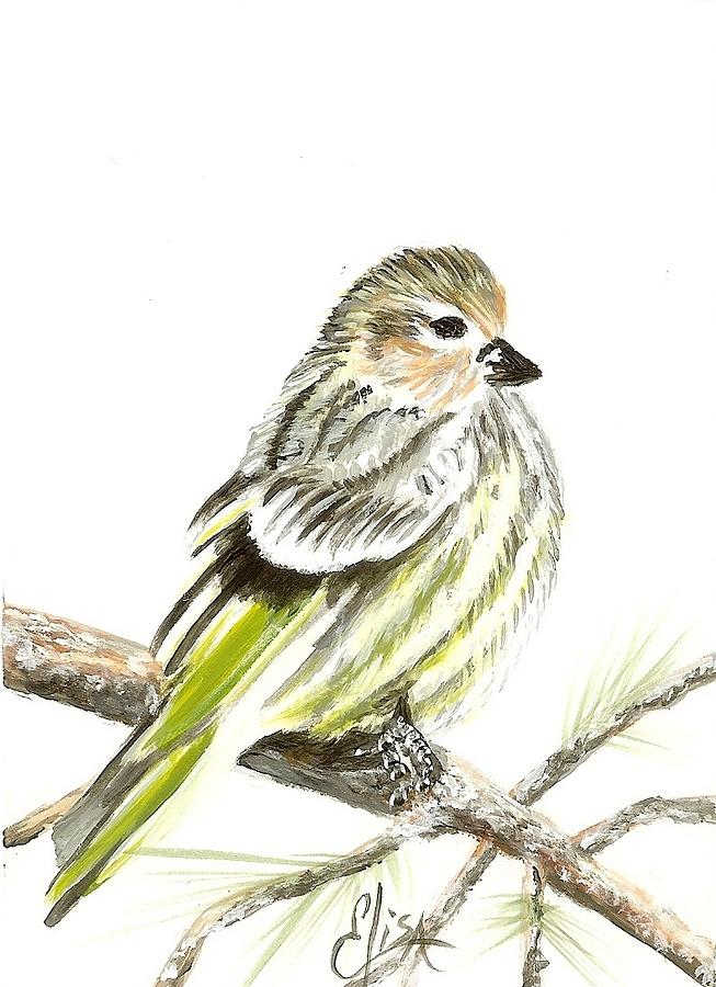 Christmas Cards Painting - Pine Siskin Finch by Elisa Gabrielli