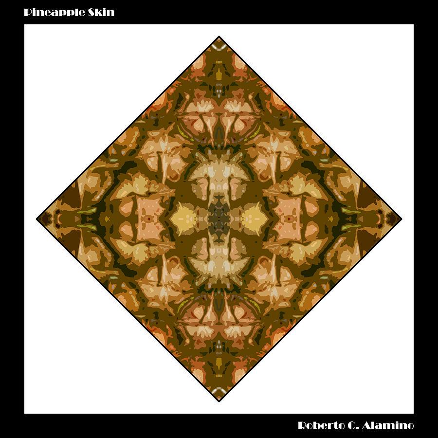 Pineapple Skin by Roberto Alamino
