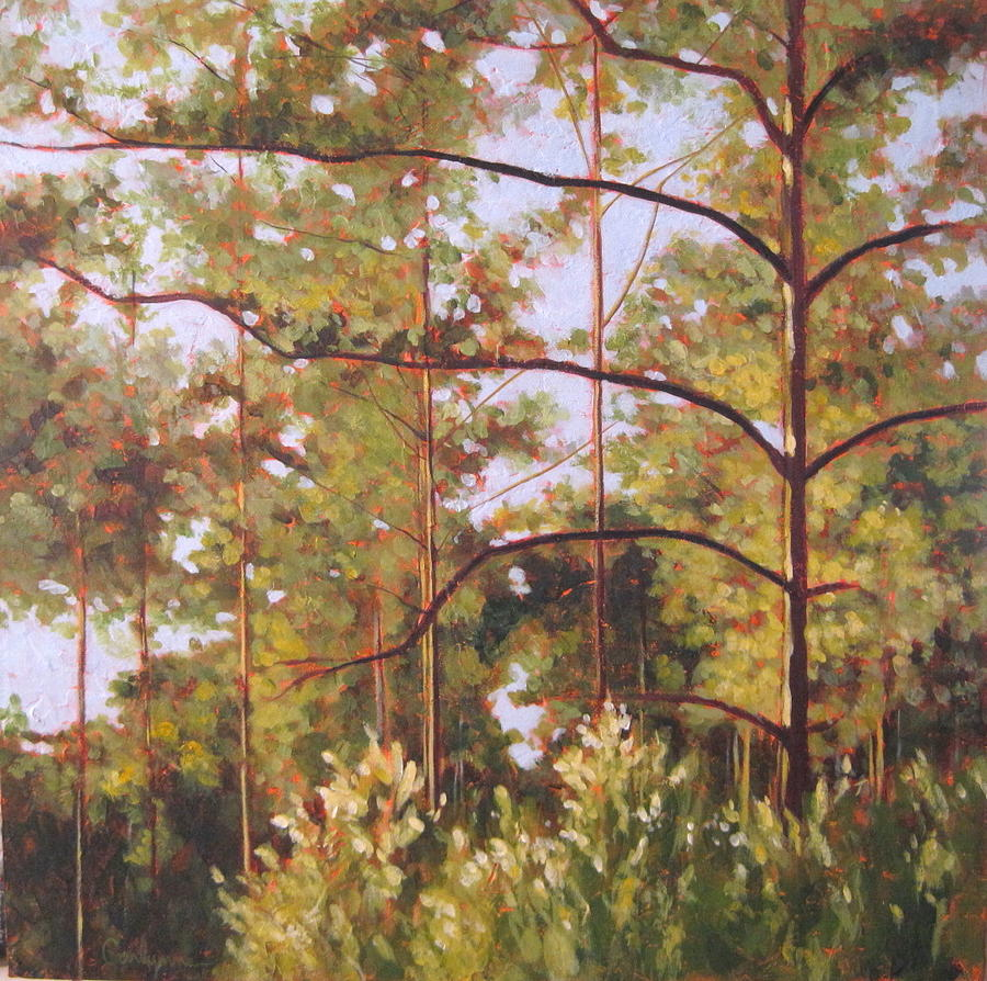 Pine Painting - Pines by Carlynne Hershberger