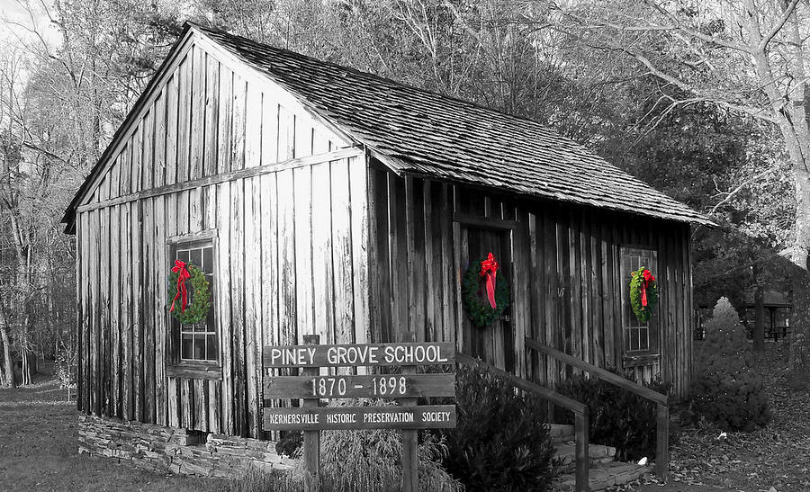 Piney Grove Photograph - Piney Grove Christmas by Jessica  st Lewis