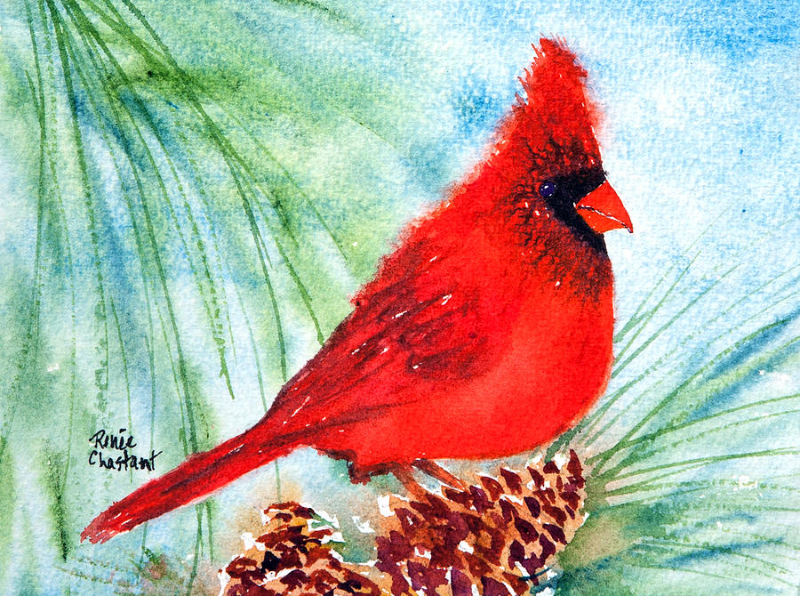 Cardinal Painting - Piney Perch by Renee Chastant