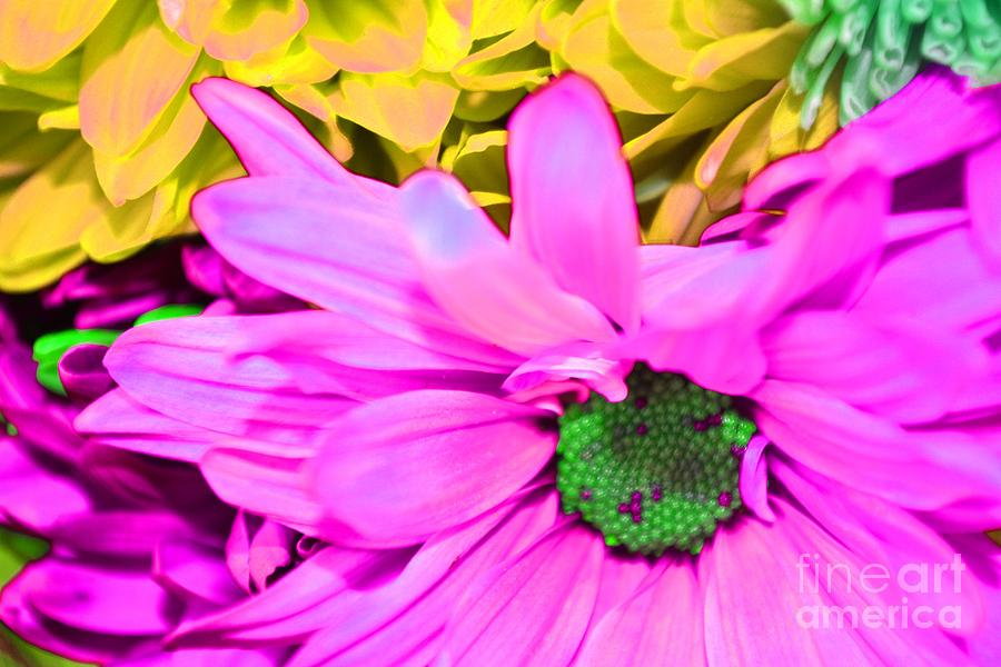 Pink And Green Photograph - Pink And Green Flowers by LLaura Burge
