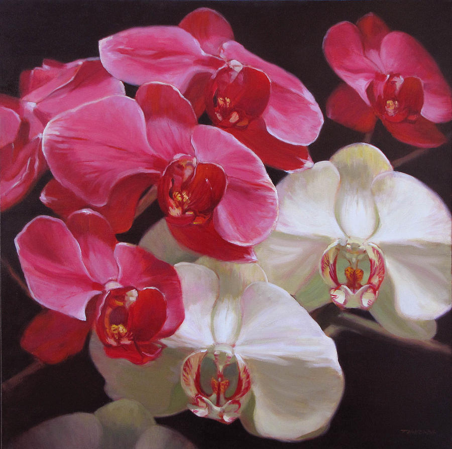 Floral Painting - Pink And White Orchids by Takayuki Harada
