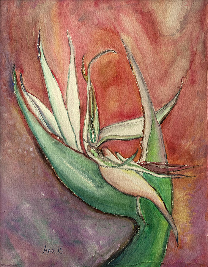 Bird Painting - Pink Bird Of Paradise by Anais DelaVega