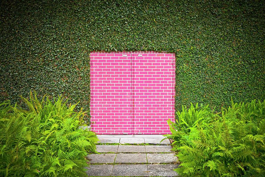 Door Photograph - Pink Brick Door by David Jordan Williams
