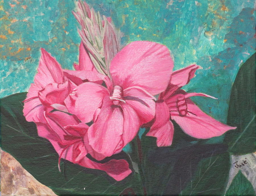 Flowers Painting - Pink Canna by Hilda and Jose Garrancho
