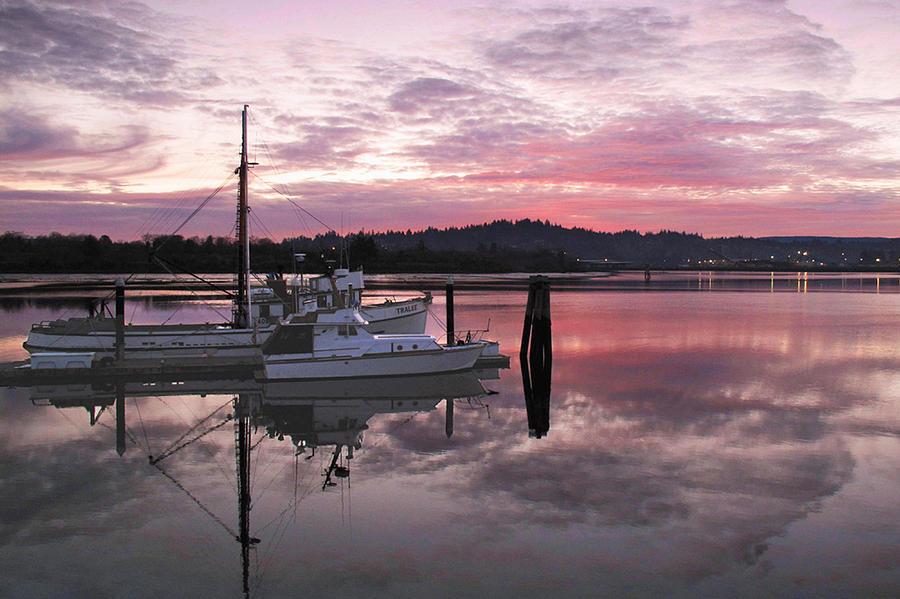 Coos Bay Photograph - Pink Dawn by Suzy Piatt