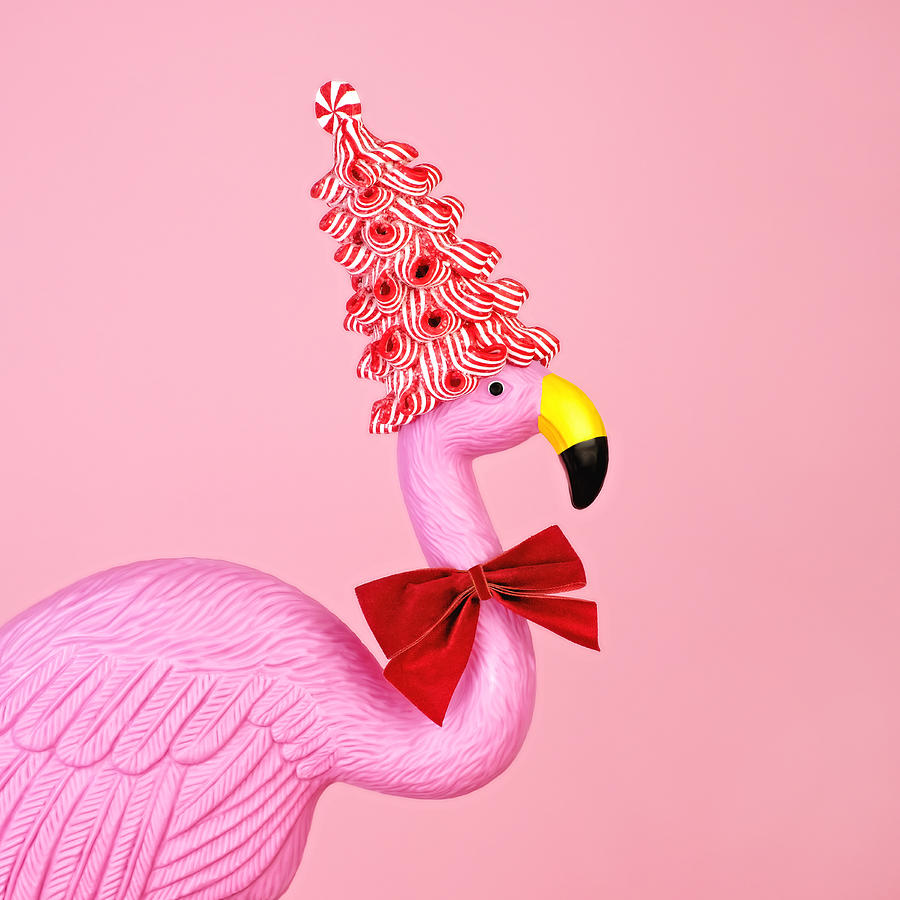 Pink flamingo wearing candy cane hat Photograph by Juj Winn