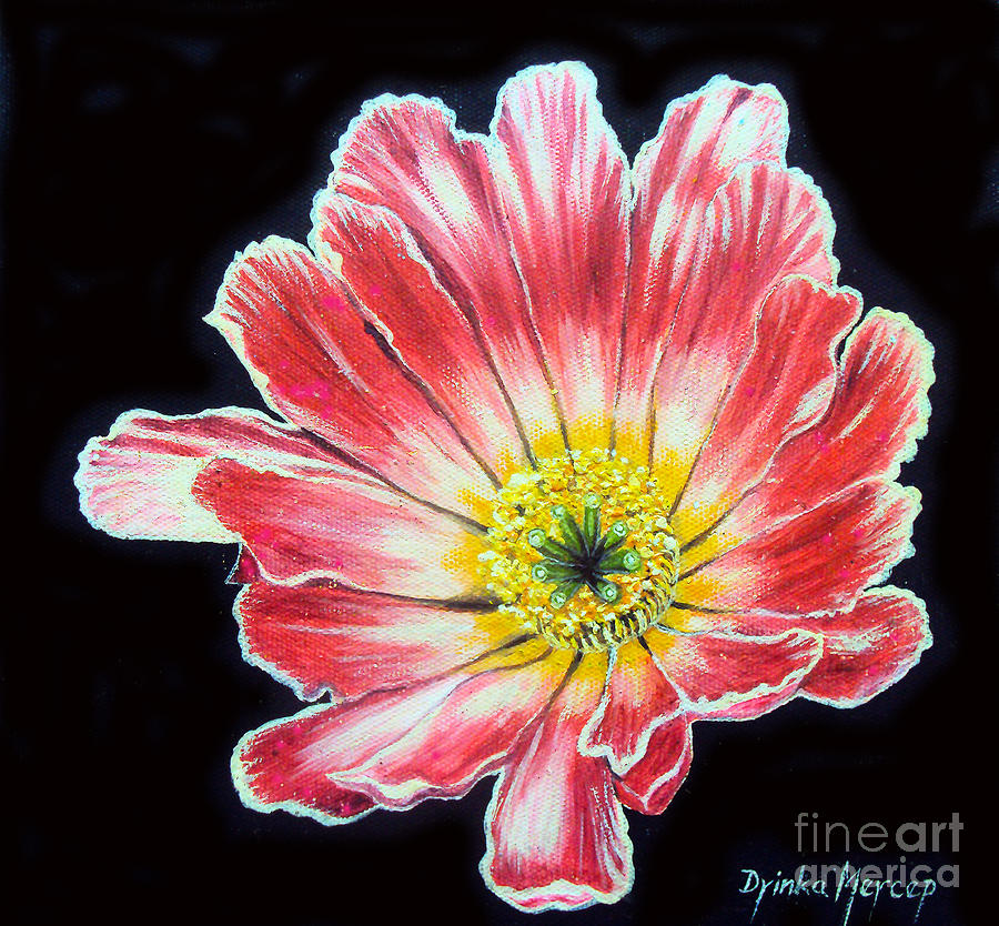 Pink Flowers Painting - Pink Flower Painting Oil on Canvas by Drinka Mercep