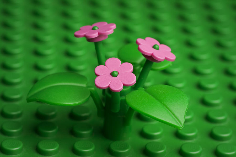 Lego Photograph - Pink Flowers by Samuel Whitton