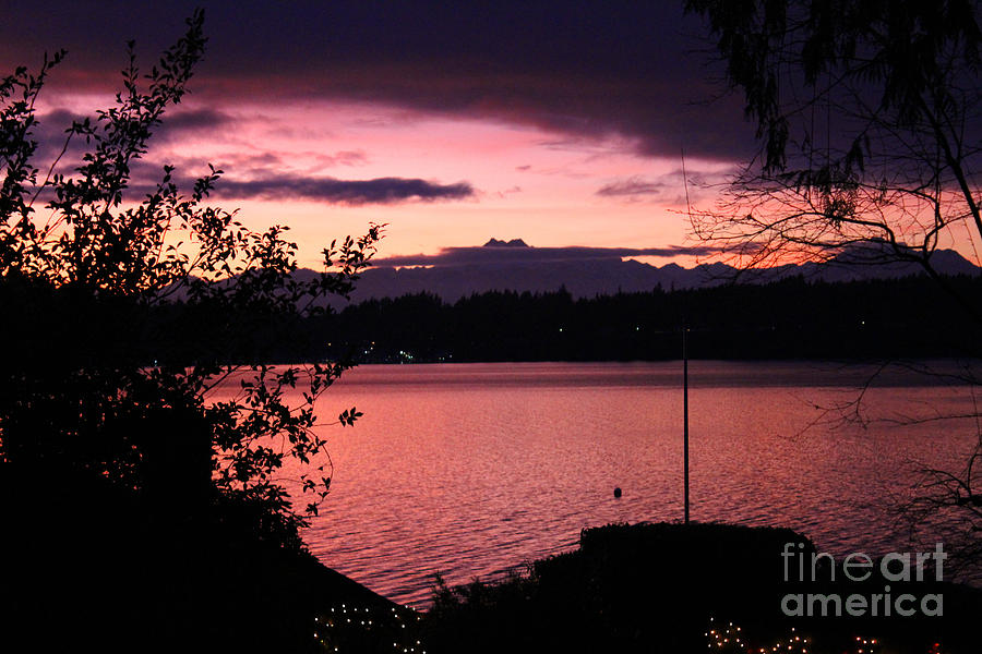 Olympic Mountains Photograph - Pink Grapefruit Colored Sunset by Kym Backland