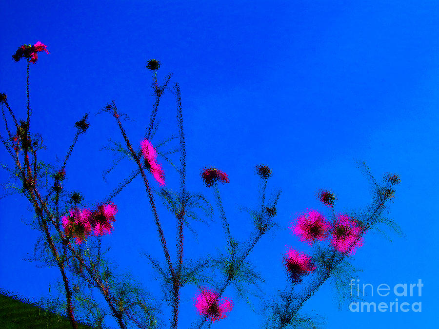 Flowers Photograph - Pink Green And Blue by Tina M Wenger