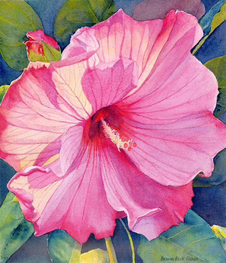 Pink Flower Painting - Pink Hibiscus by Brenda Beck Fisher