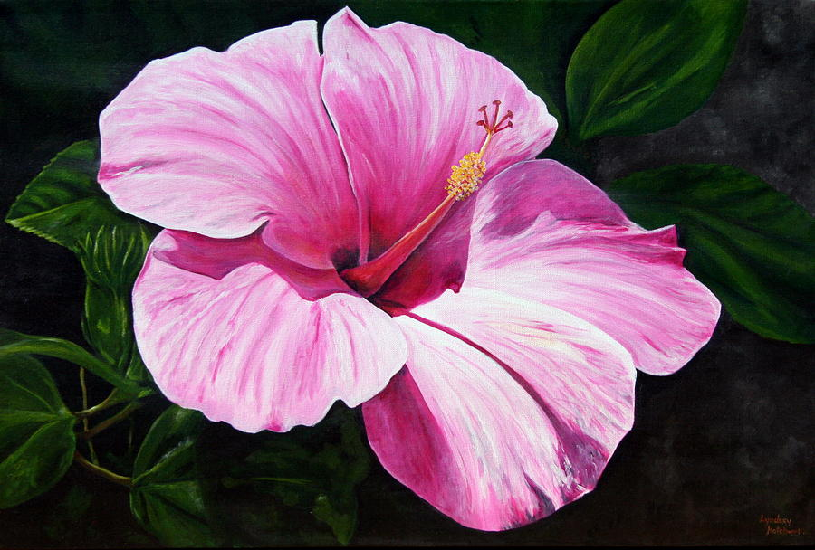 Hibiscus Painting - Pink Hibiscus by Lyndsey Hatchwell