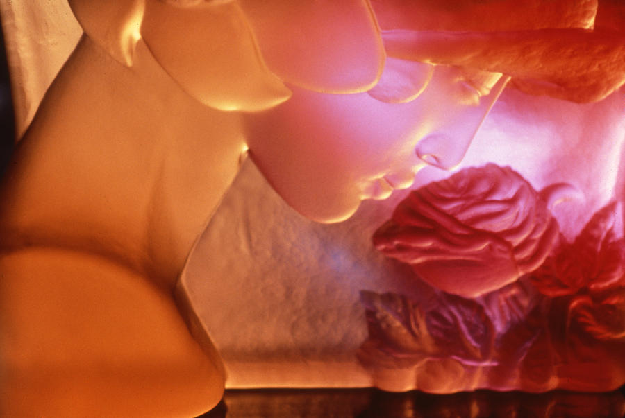 Botanical Photograph - Pink Lady by Etti PALITZ