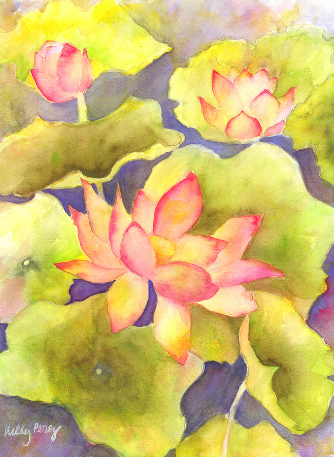 Water Lily Painting - Pink Lotus by Kelly Perez