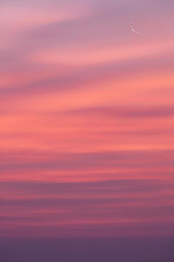 Sunrise Photograph - Pink Moon by Bill Wakeley