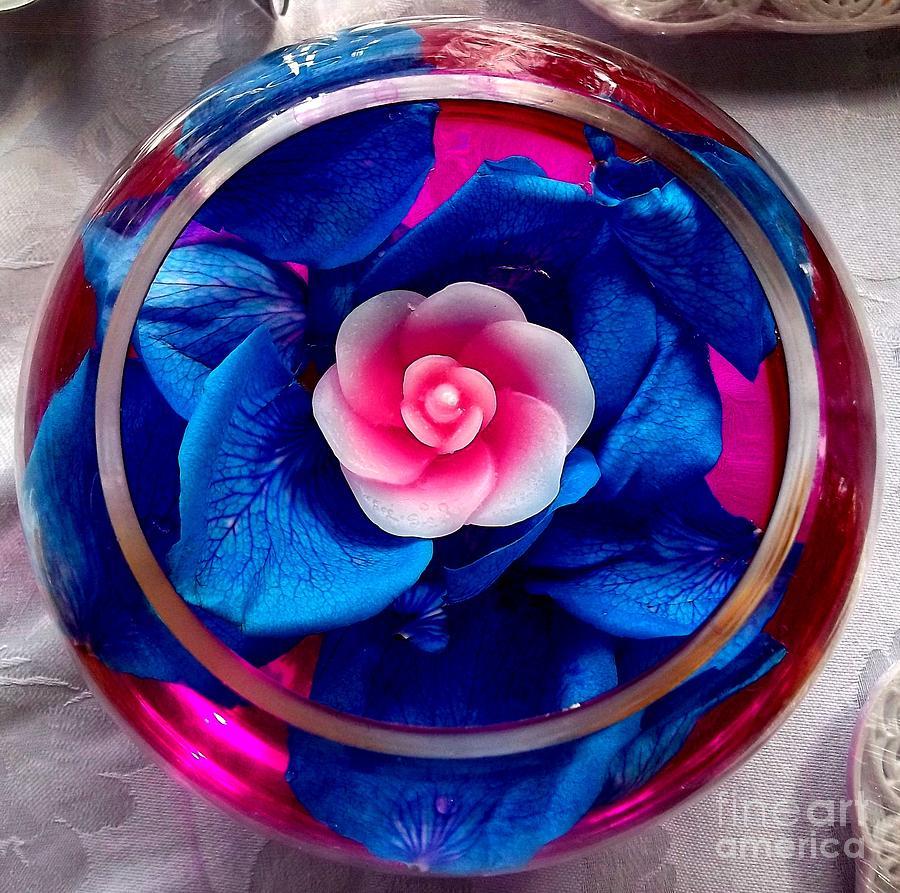A Pink Pool Photograph by Vladimir Berrio Lemm