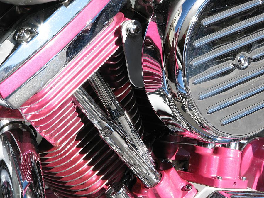Pink Power Photograph - Pink Power by Samuel Sheats