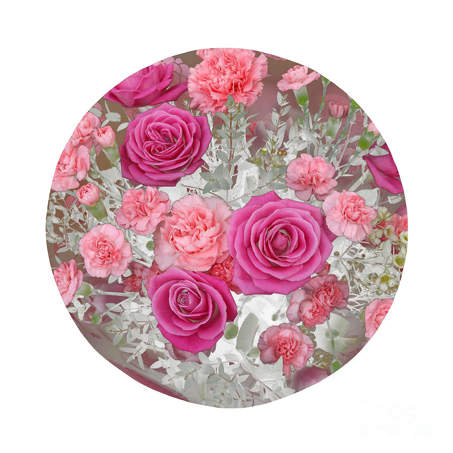 Framed Photograph - Pink Roses And Carnations In Circle by Rosemary Calvert