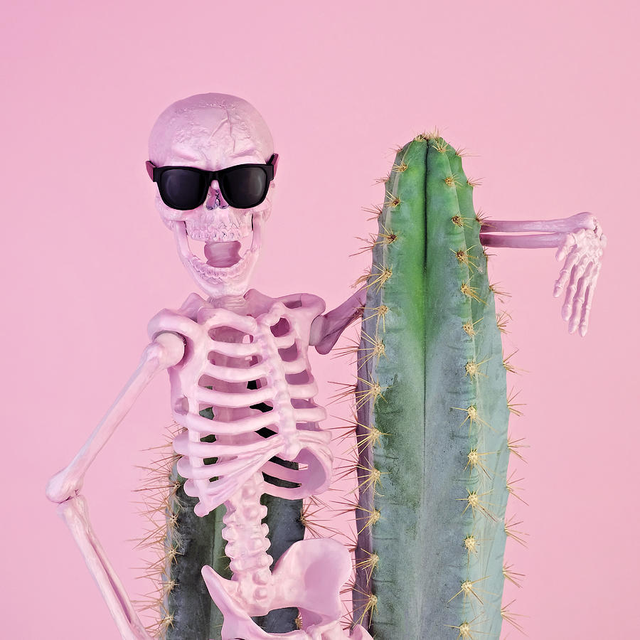 Pink Skeleton With Cactus Photograph by Juj Winn