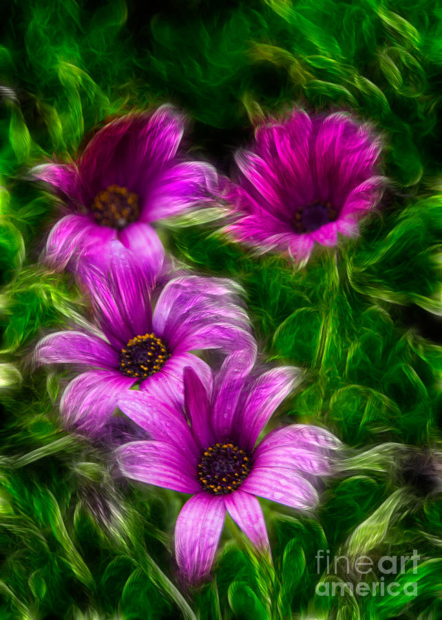 Background Photograph - Pink  by Stelios Kleanthous