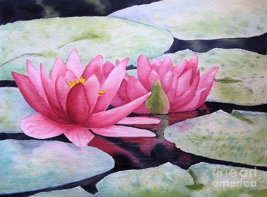 Pink Painting - Pink Waterlilies by Diane Marcotte