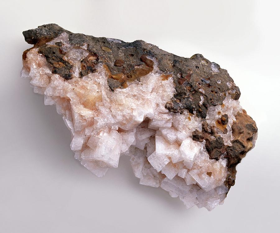 Basalt Photograph - Pink-white Chabazite In Basalt Groundmass by Dorling Kindersley/uig