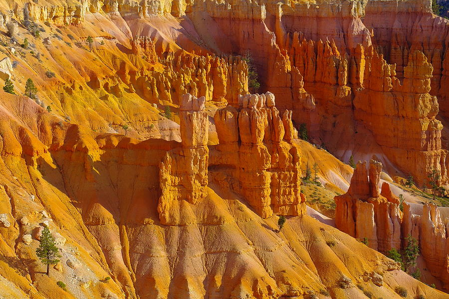 Rocks Photograph - Pinnicles At Sunset Point Bryce Canyon National Park by Jeff Swan