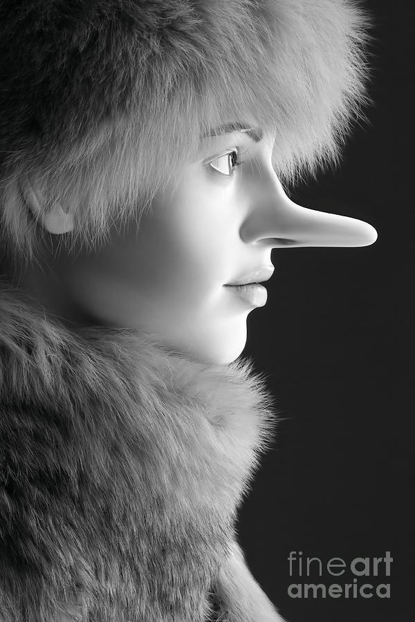 Pinocchio Photograph - Pinocchios Daughter by Sophie Vigneault