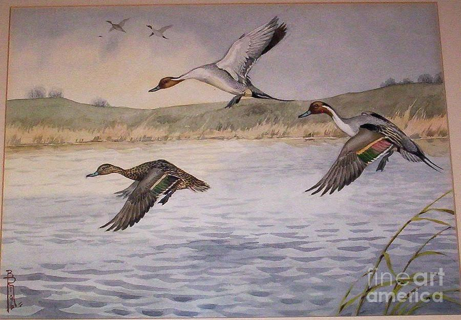 Russia Painting - Pintail Ducks In Flight by Boris Riab