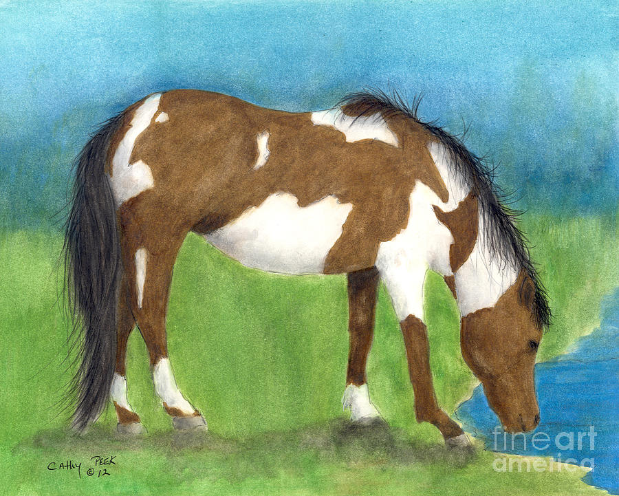 Pinto Painting - Pinto Mustang Horse Mare Farm Ranch Animal Art by Cathy Peek