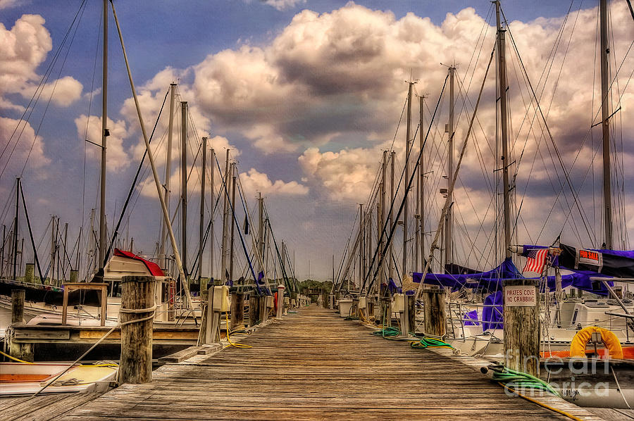 Sail Boat Photograph - Pirates Cove by Lois Bryan