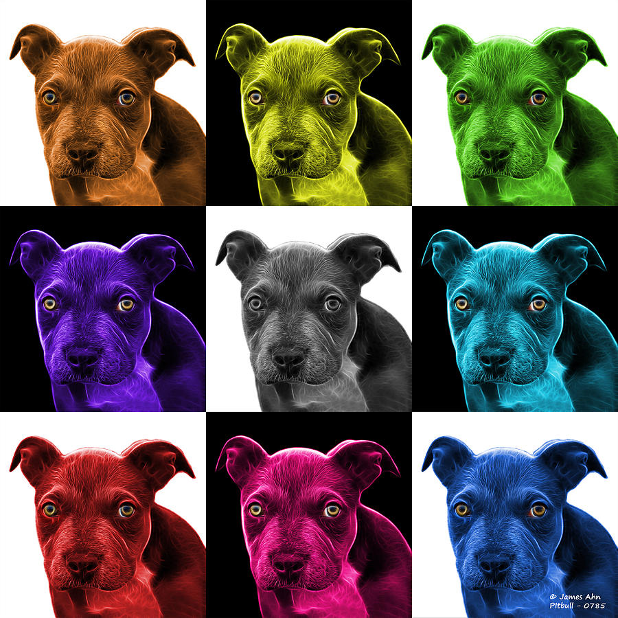 Pitbull Photograph - Pitbull Puppy Pop Art - 7085 V2 - M by James Ahn