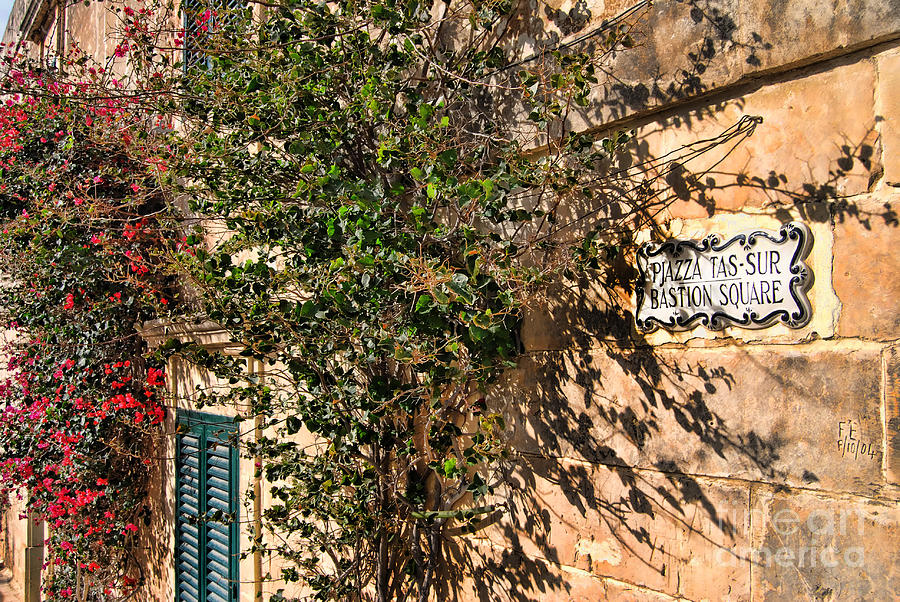 Alexandra Photograph - Pjazza In Mdina by Alexandra Jordankova
