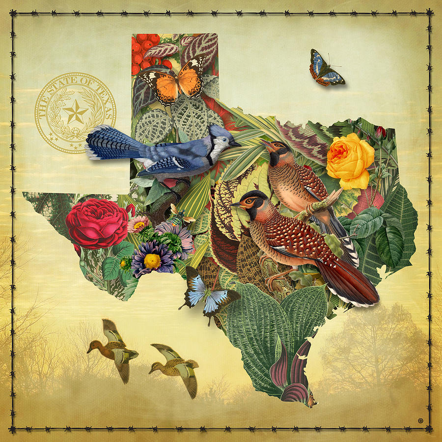 Maps Painting - Nature Map of Texas by Gary Grayson
