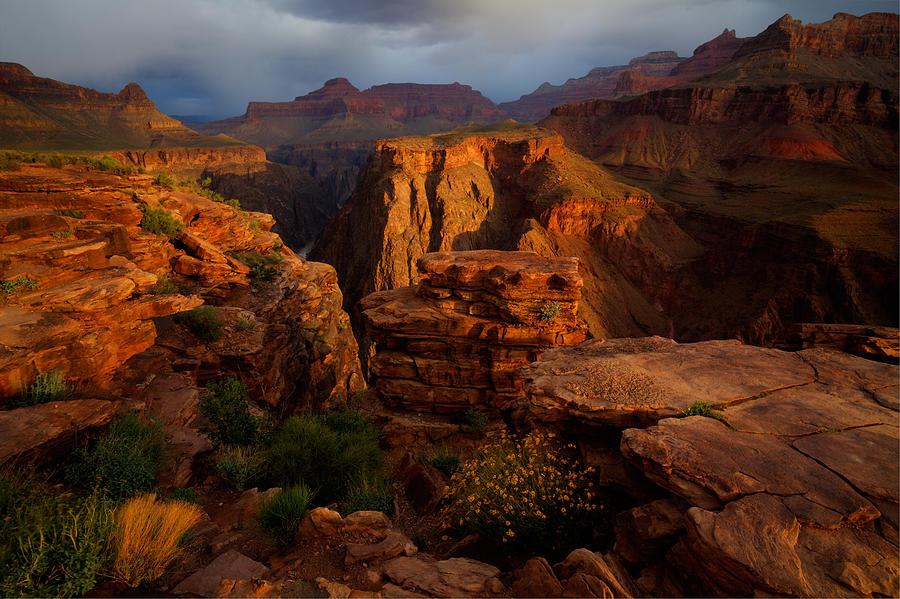 Grand Canyon Photograph - Plateau Point by Kiril Kirkov