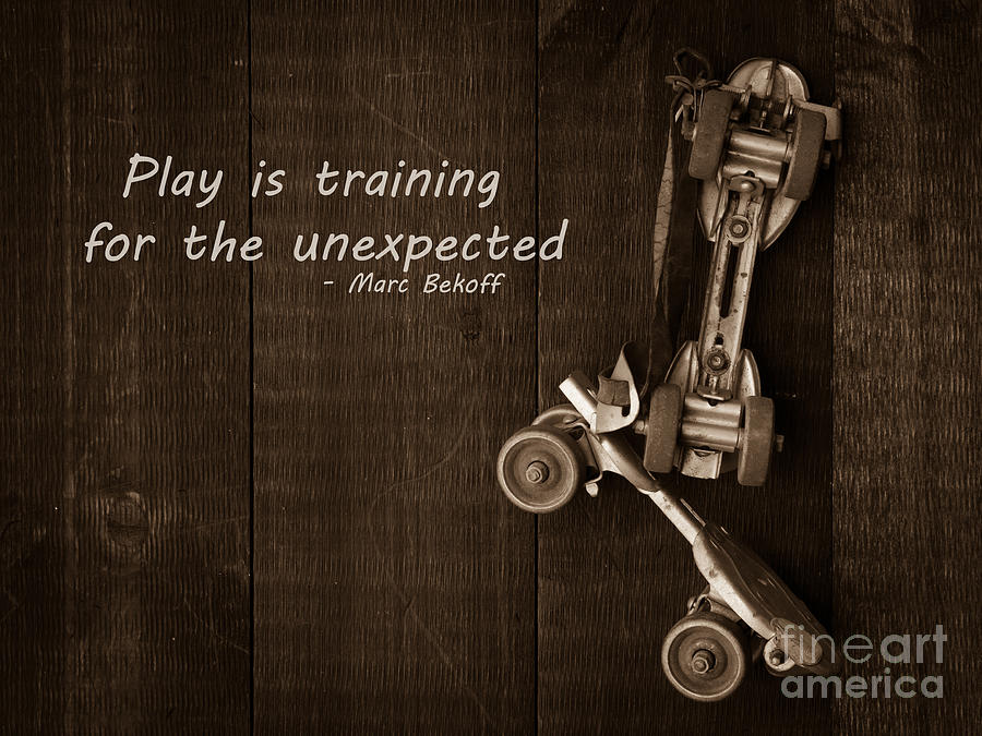 Play Photograph - Play Is Training For The Unexpected by Edward Fielding