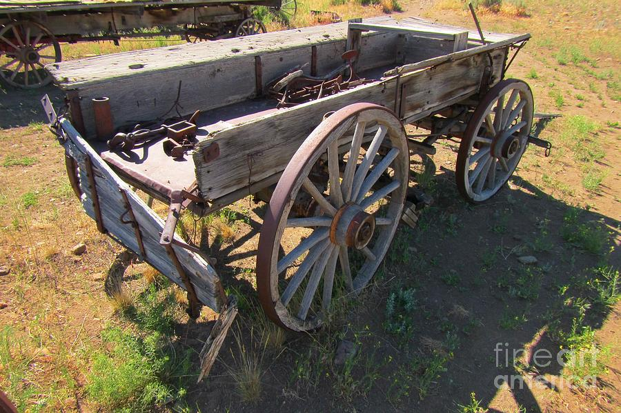 Wagons Photograph - Please Dont Kick The Tires by John Malone
