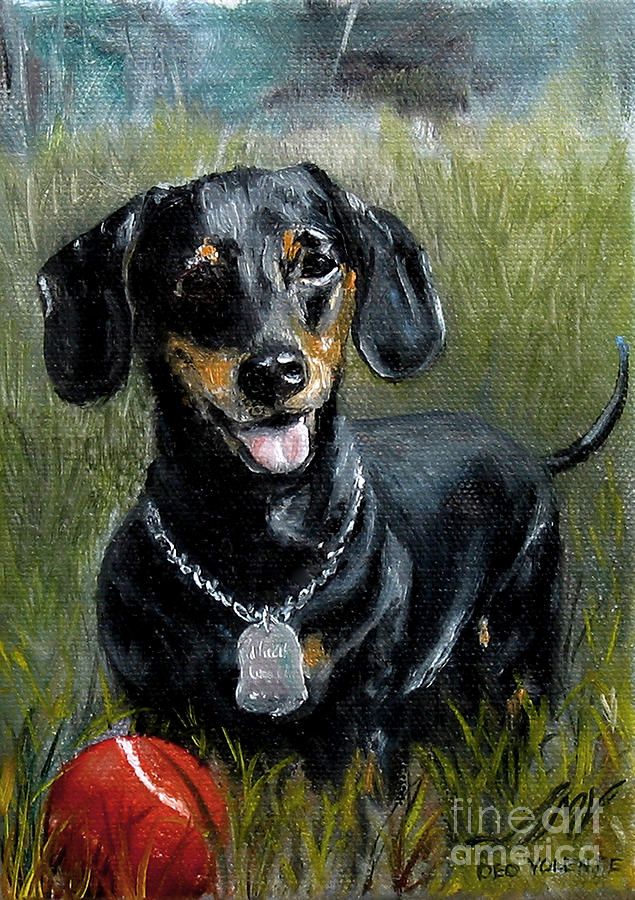 Please Throw The Ball by Stella Violano