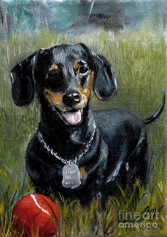 Dachshund Painting - Please Throw The Ball by Stella Violano