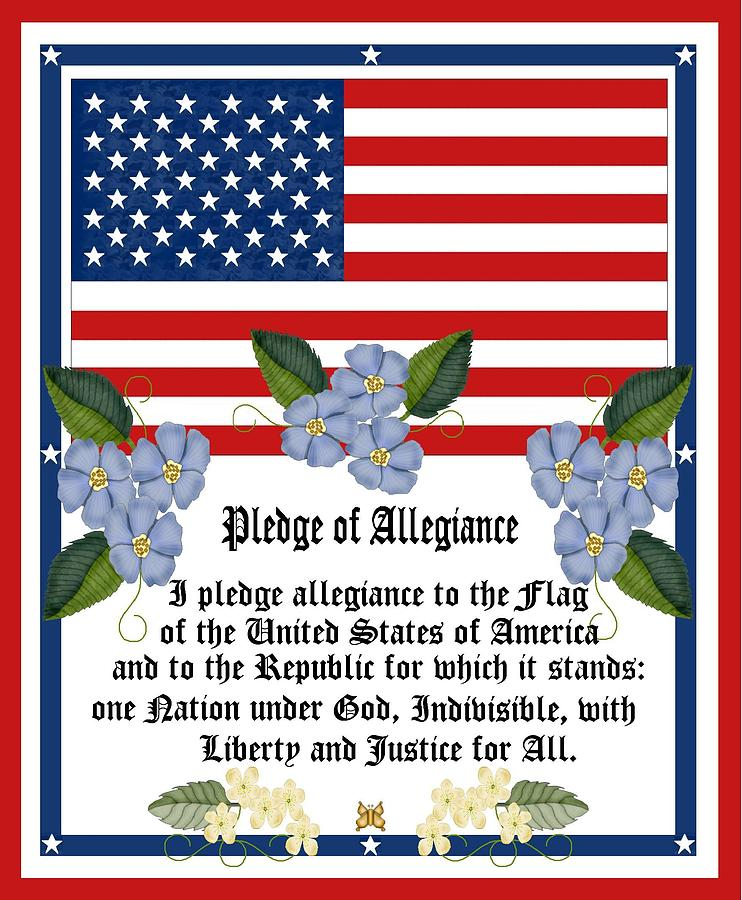White Flowers Painting - Pledge Of Allegiance by Anne Norskog