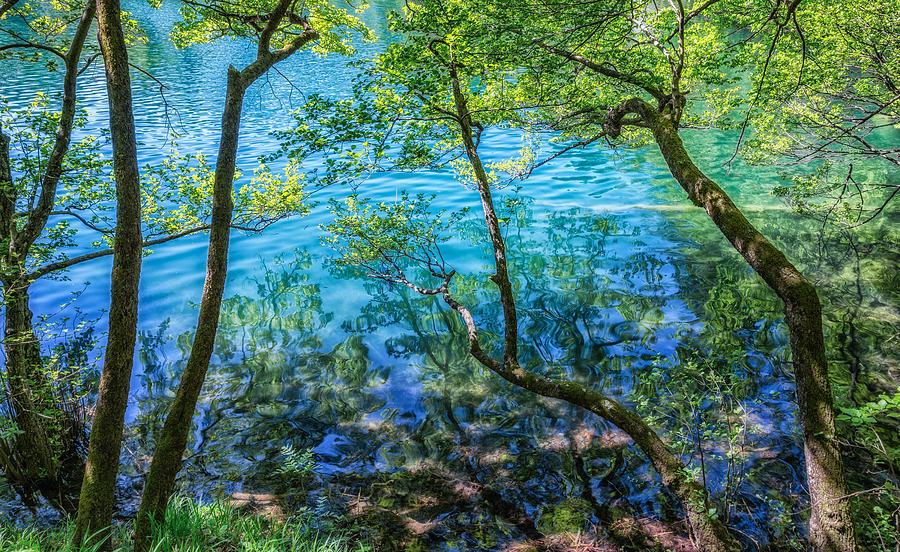 Plitvice Lakes Photograph