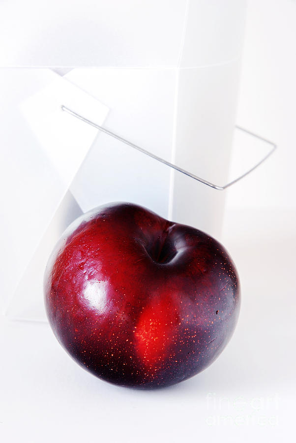 Plum Photograph - Plum by HD Connelly