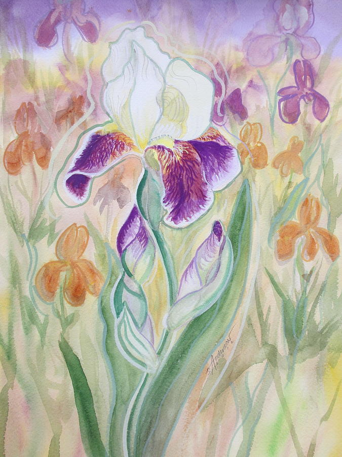 Floral Painting - Plum Pudding Iris by Sherri Anderson